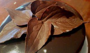 schokoladenblätter