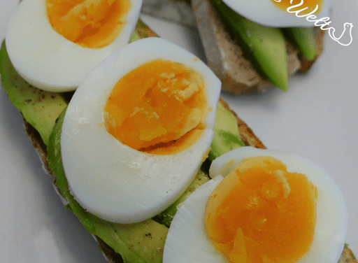 Avocado-Eier-Brot