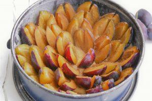 Zwetschgenkuchen Quark-Ölteig